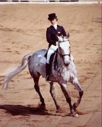 1979: My mother took the European Champion title in dressage with Mon Cherie, who was by the Vorwerk stallion More Magic xx, and they also won the 1980 Olympic Games.