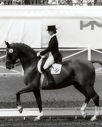 Eleventh place with Acapulco at the 1984 Olympic Games in Los Angeles/USA